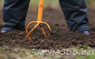Ручной культиватор: ротационный и садовый окучник, виды и что дает универсальный, какие бывают