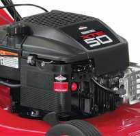 Бензиновые косилки: популярные модели, критерии выбора