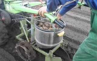 Самодельная картофелекопалка для трактора мтз 80