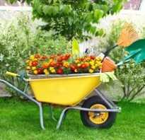 Строительство и садоводство при помощи тележек для сада