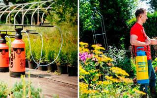 Опрыскиватель: как выбрать мотоопрыскиватель для сада и огорода — садовый аккумуляторный