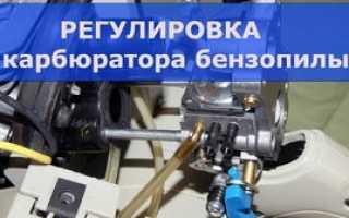 Как работает карбюратор бензопилы